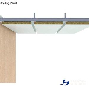 type_D_celing_panel